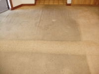 single pass of rotovac through smoke stained carpet